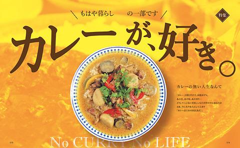 014-015-カレー特集