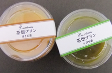 ikegawa02.jpg